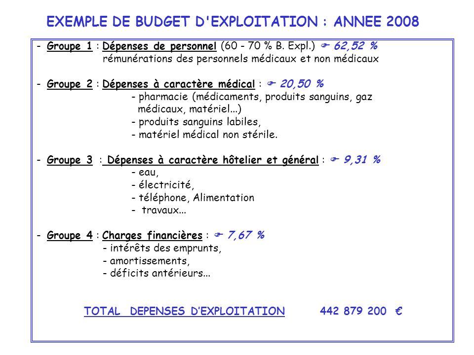 EXEMPLE DE BUDGET D EXPLOITATION : ANNEE 2008