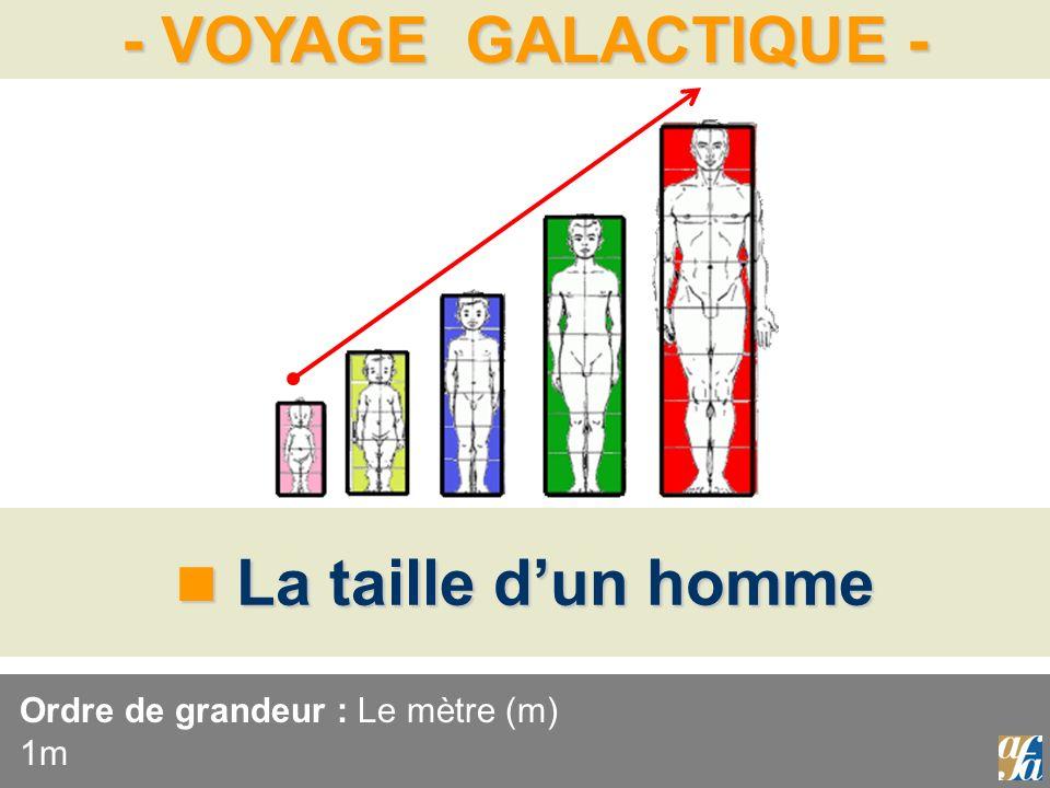 Ordre de grandeur : Le mètre (m) 1m