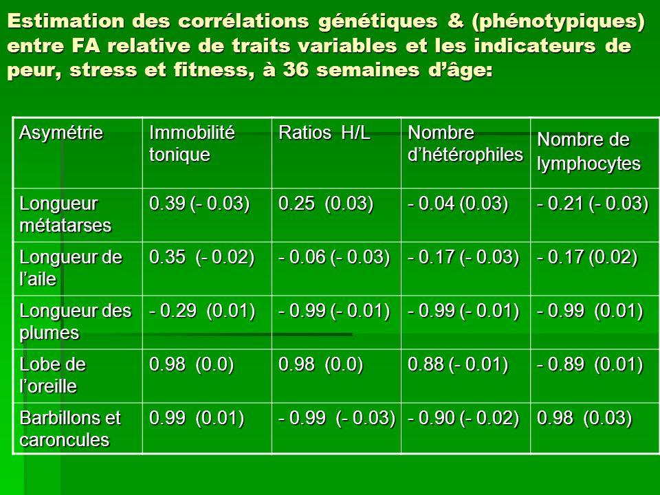 Estimation des corrélations génétiques & (phénotypiques) entre FA relative de traits variables et les indicateurs de peur, stress et fitness, à 36 semaines d'âge: