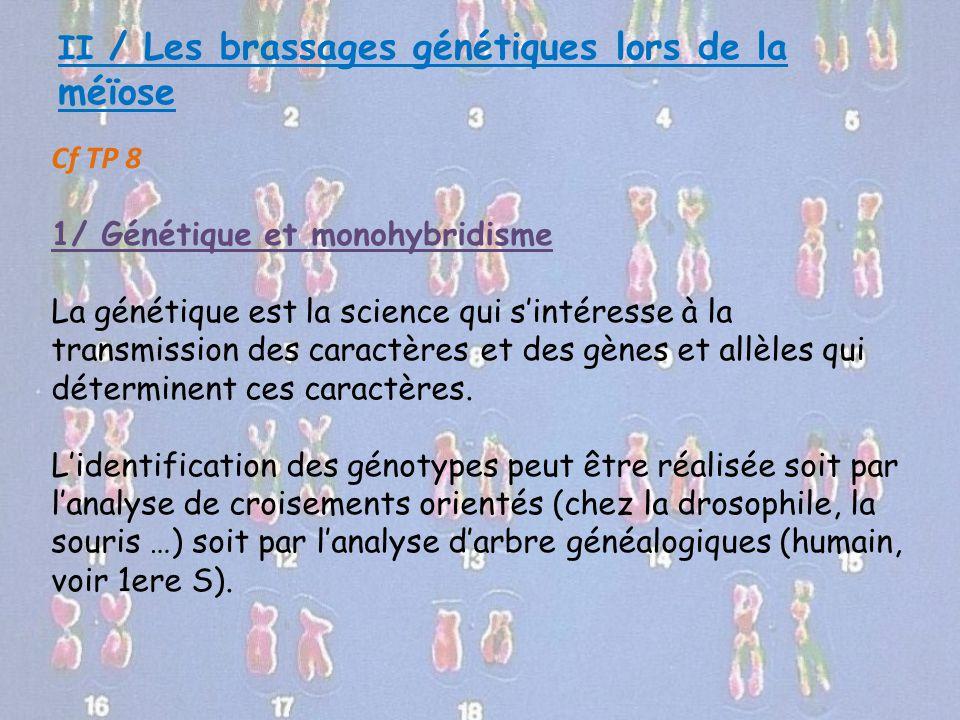 II / Les brassages génétiques lors de la méïose