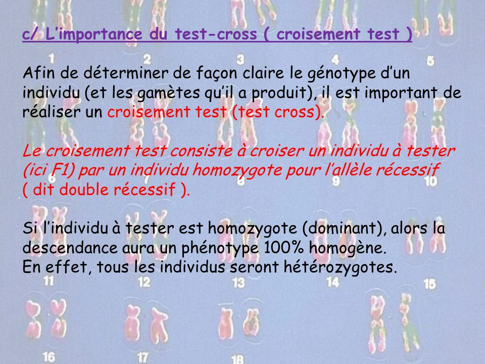 c/ L'importance du test-cross ( croisement test )