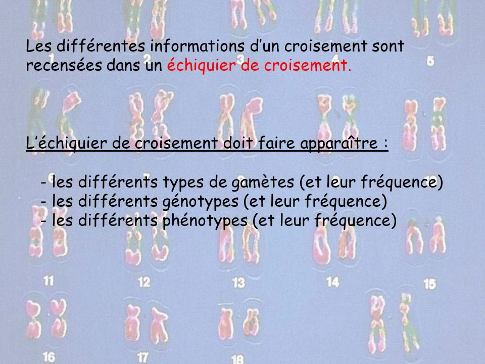Les différentes informations d'un croisement sont recensées dans un échiquier de croisement.