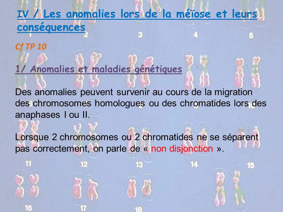 IV / Les anomalies lors de la méïose et leurs conséquences