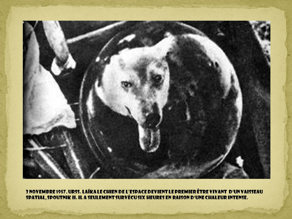 3 novembre 1957. URSS.