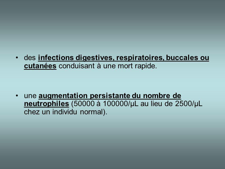 des infections digestives, respiratoires, buccales ou cutanées conduisant à une mort rapide.