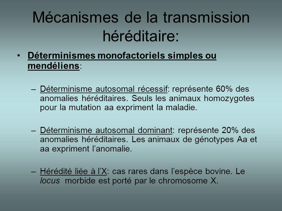 Mécanismes de la transmission héréditaire: