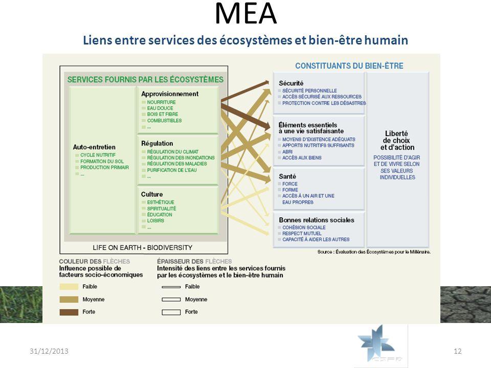 Liens entre services des écosystèmes et bien-être humain