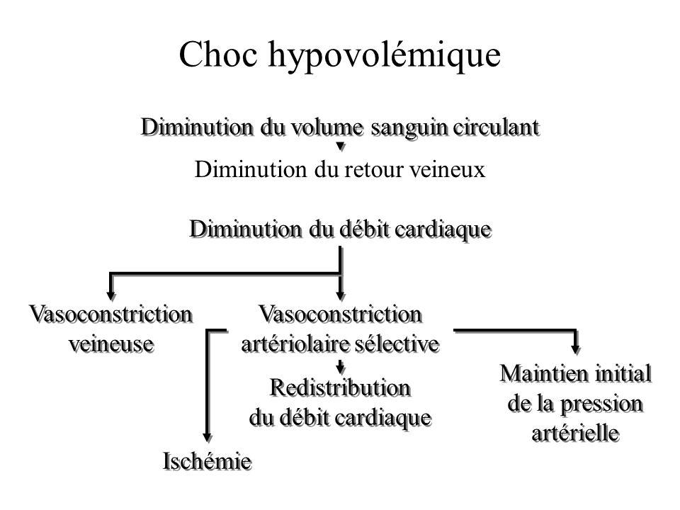 Choc hypovolémique Diminution du volume sanguin circulant