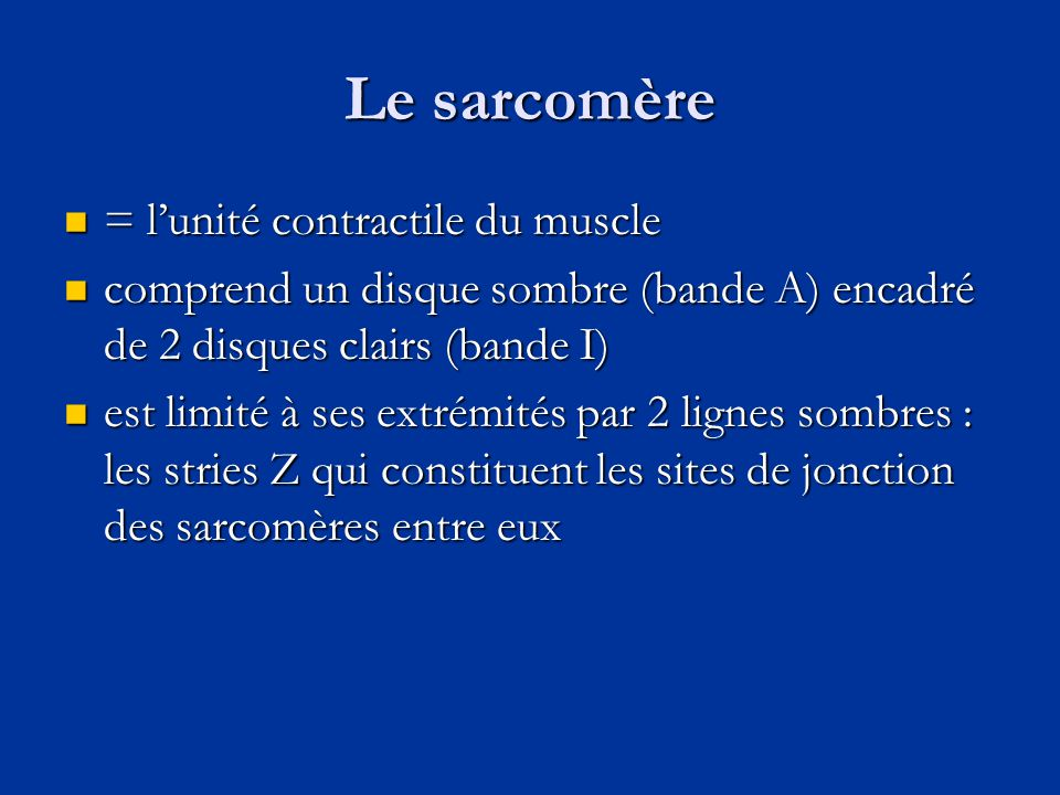 Le sarcomère = l'unité contractile du muscle
