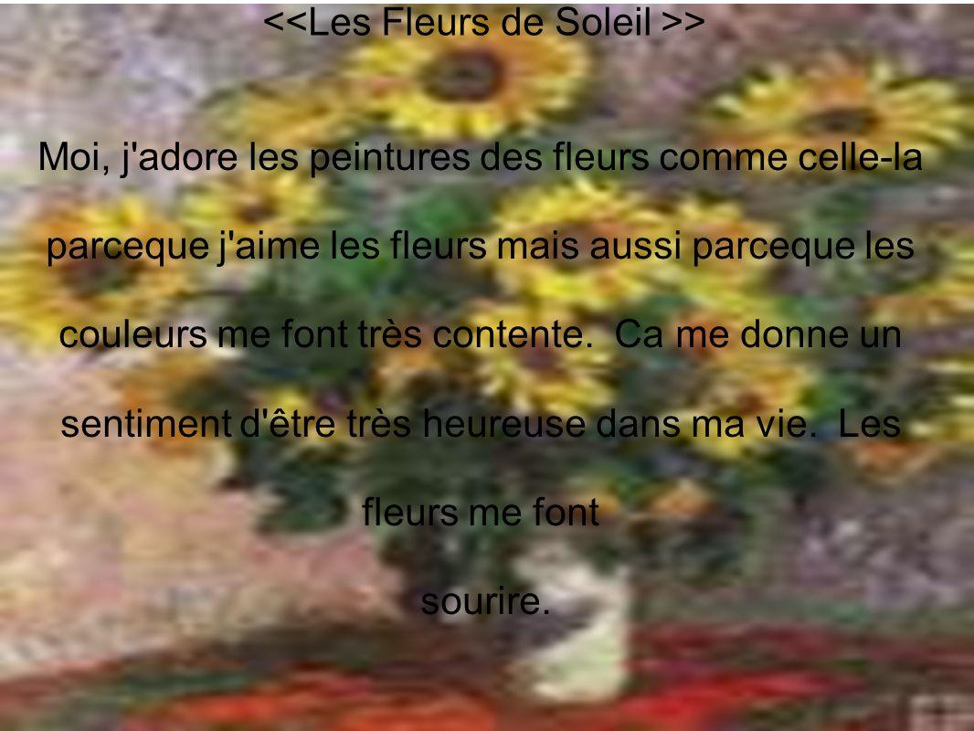 <<Les Fleurs de Soleil >>
