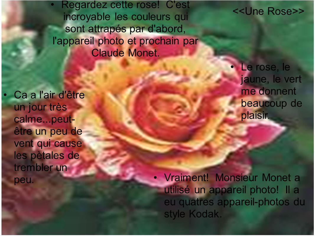 Regardez cette rose! C est incroyable les couleurs qui sont attrapés par d abord, l appareil photo et prochain par Claude Monet.