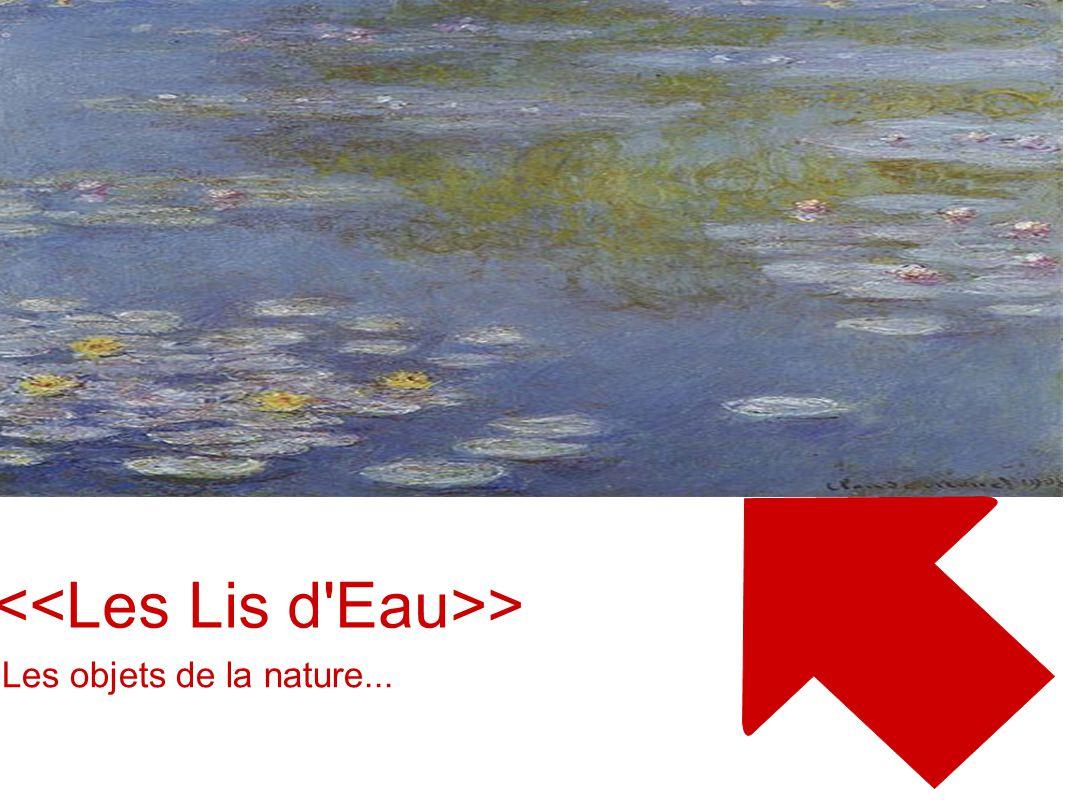 <<Les Lis d Eau>>