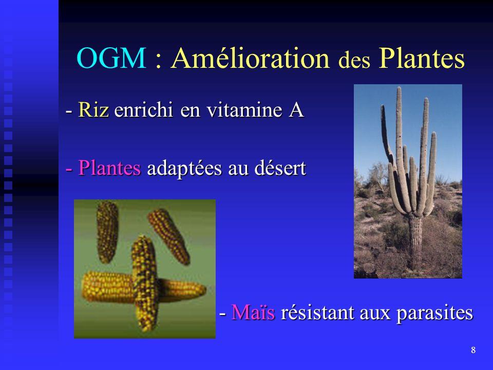 OGM : Amélioration des Plantes