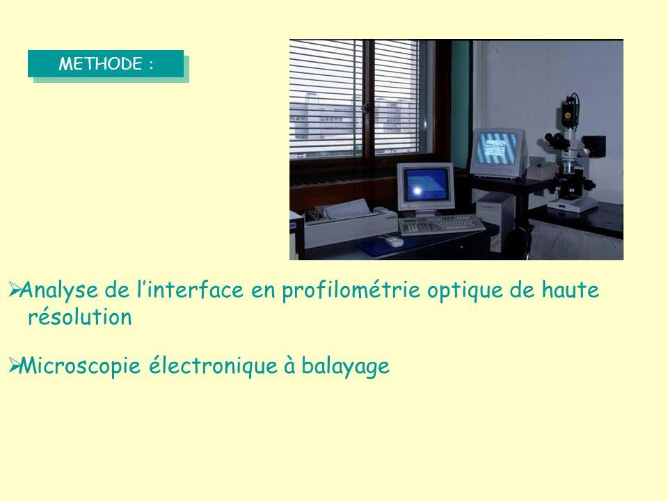 Analyse de l'interface en profilométrie optique de haute résolution
