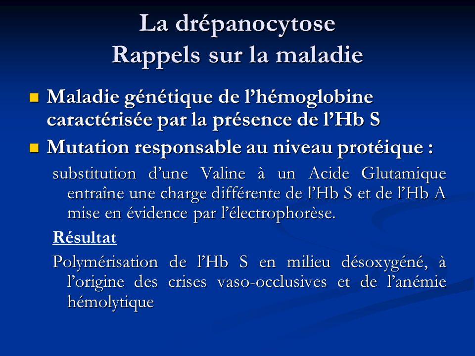 La drépanocytose Rappels sur la maladie