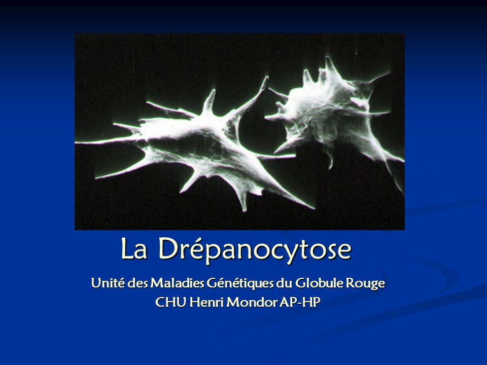 Unité des Maladies Génétiques du Globule Rouge CHU Henri Mondor AP-HP