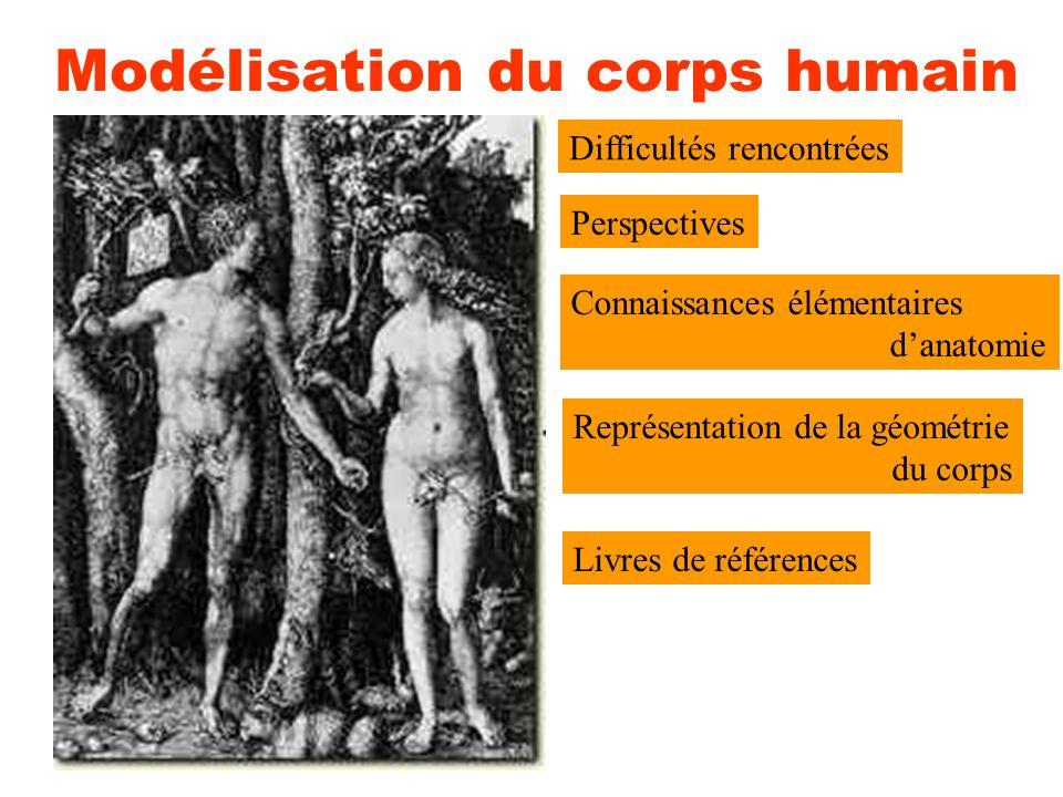 Modélisation du corps humain