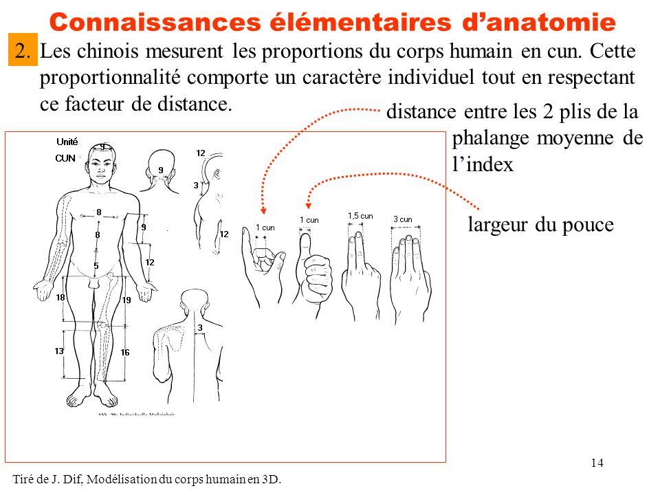 Connaissances élémentaires d'anatomie