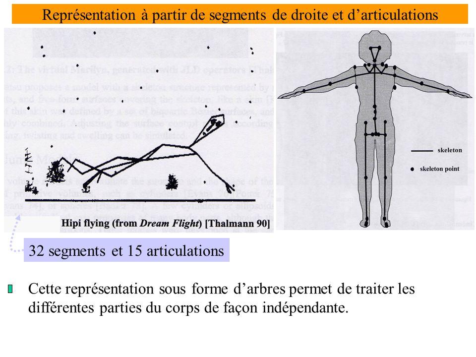 Représentation à partir de segments de droite et d'articulations