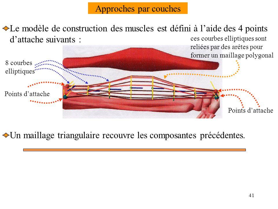 Le modèle de construction des muscles est défini à l'aide des 4 points