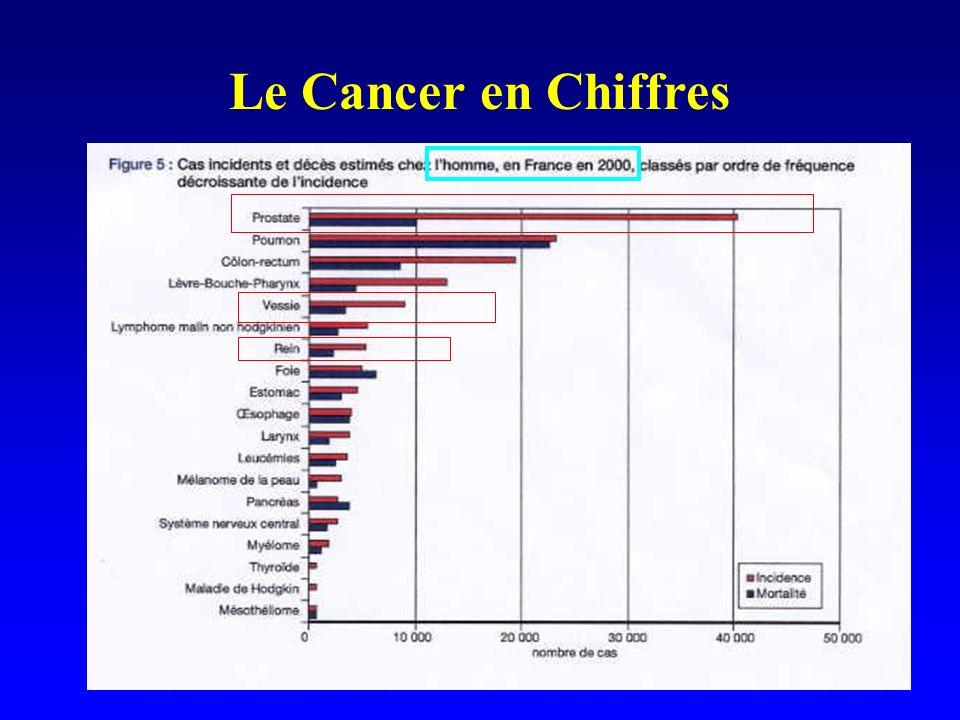 Le Cancer en Chiffres