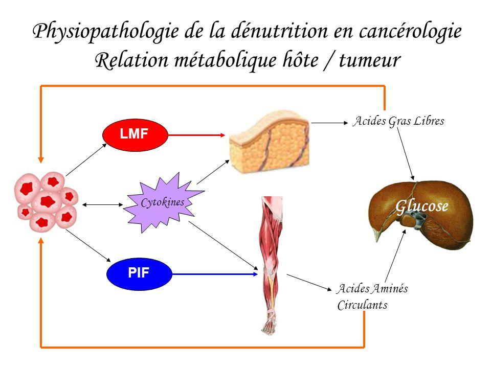 Physiopathologie de la dénutrition en cancérologie Relation métabolique hôte / tumeur