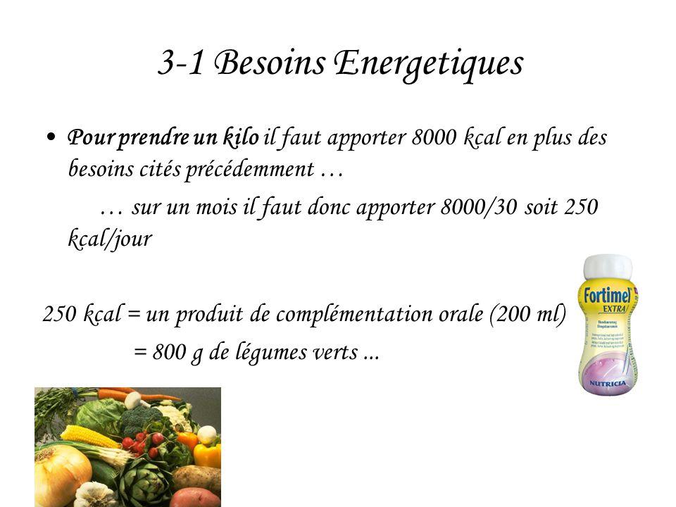 3-1 Besoins Energetiques