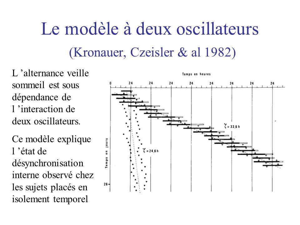 Le modèle à deux oscillateurs (Kronauer, Czeisler & al 1982)