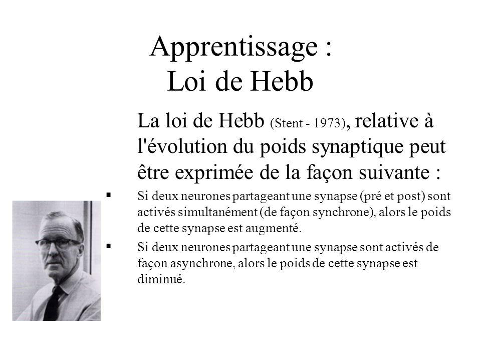 Apprentissage : Loi de Hebb