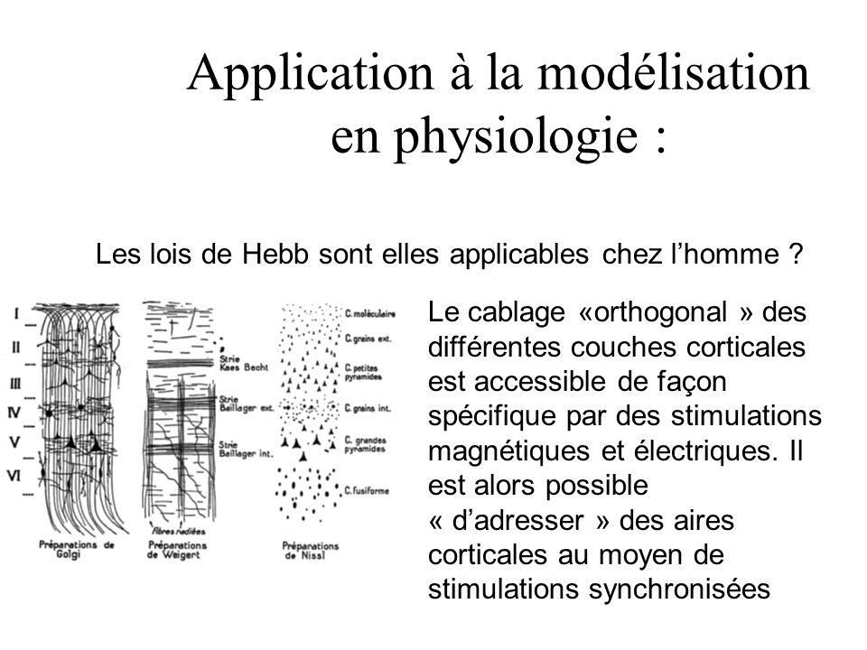 Application à la modélisation en physiologie :