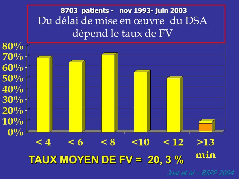 Du délai de mise en œuvre du DSA