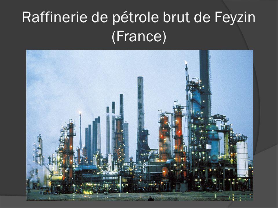 Raffinerie de pétrole brut de Feyzin (France)