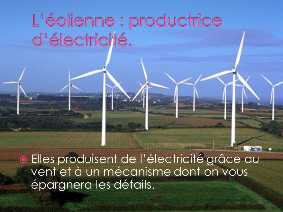 L'éolienne : productrice d'électricité.