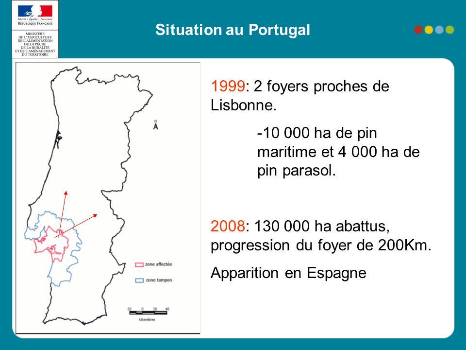 Situation au Portugal 1999: 2 foyers proches de Lisbonne. -10 000 ha de pin maritime et 4 000 ha de pin parasol.