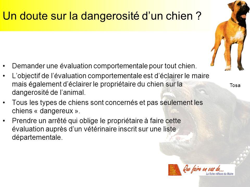 Un doute sur la dangerosité d'un chien