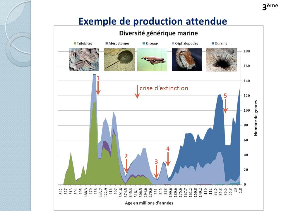 Exemple de production attendue