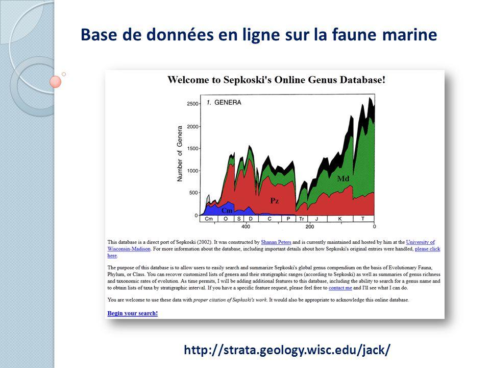 Base de données en ligne sur la faune marine