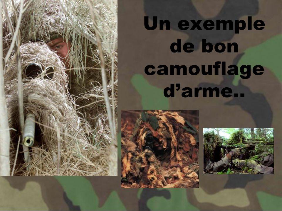 Un exemple de bon camouflage d'arme..