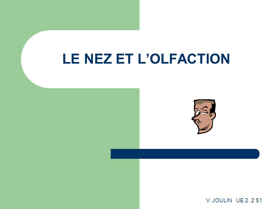 LE NEZ ET L'OLFACTION V. JOULIN UE 2. 2 S1