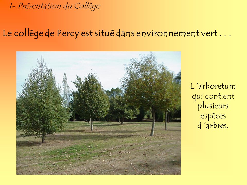 L 'arboretum qui contient plusieurs espèces d 'arbres.