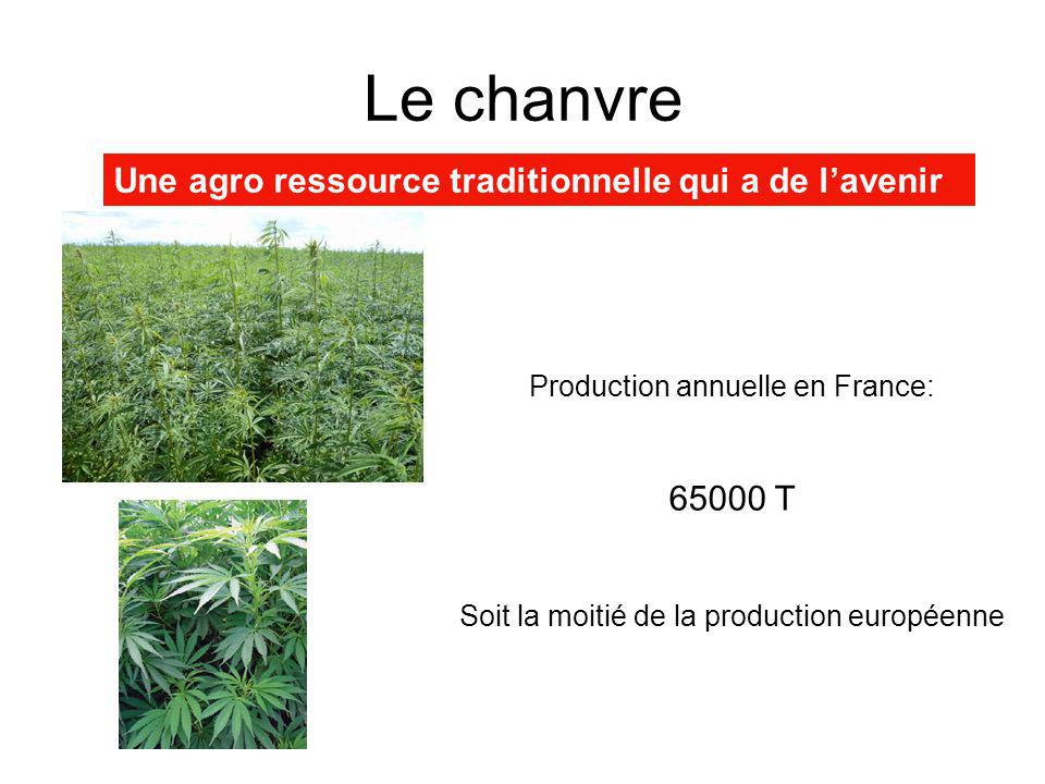 Le chanvre Une agro ressource traditionnelle qui a de l'avenir 65000 T