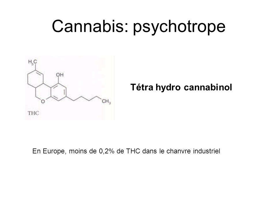 Cannabis: psychotrope