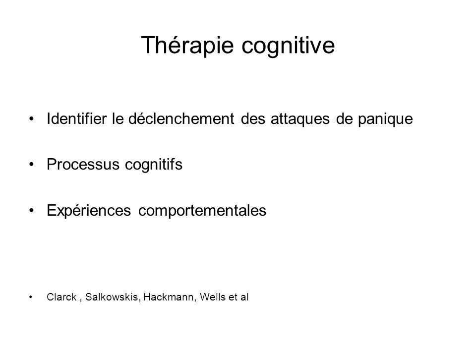 Thérapie cognitive Identifier le déclenchement des attaques de panique