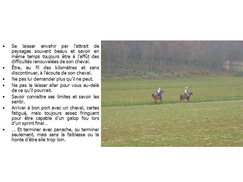 Se laisser envahir par l'attrait de paysages souvent beaux et savoir en même temps toujours être à l'affût des difficultés renouvelées de son cheval.