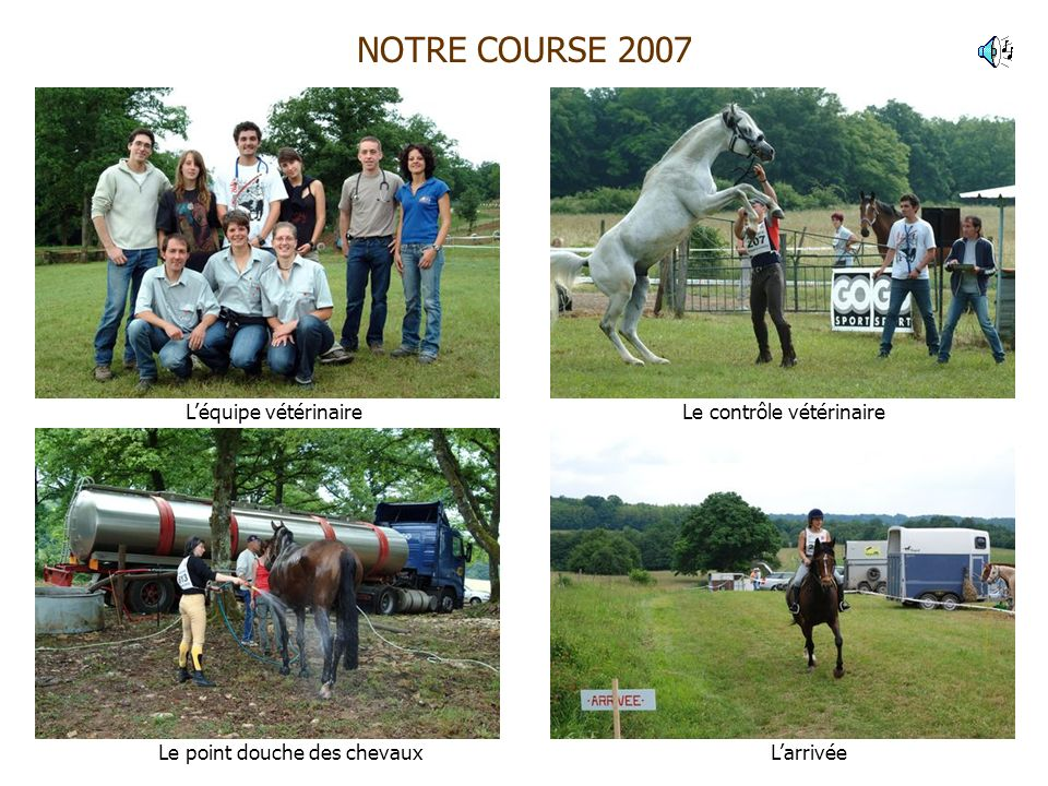 NOTRE COURSE 2007 L'équipe vétérinaire Le contrôle vétérinaire