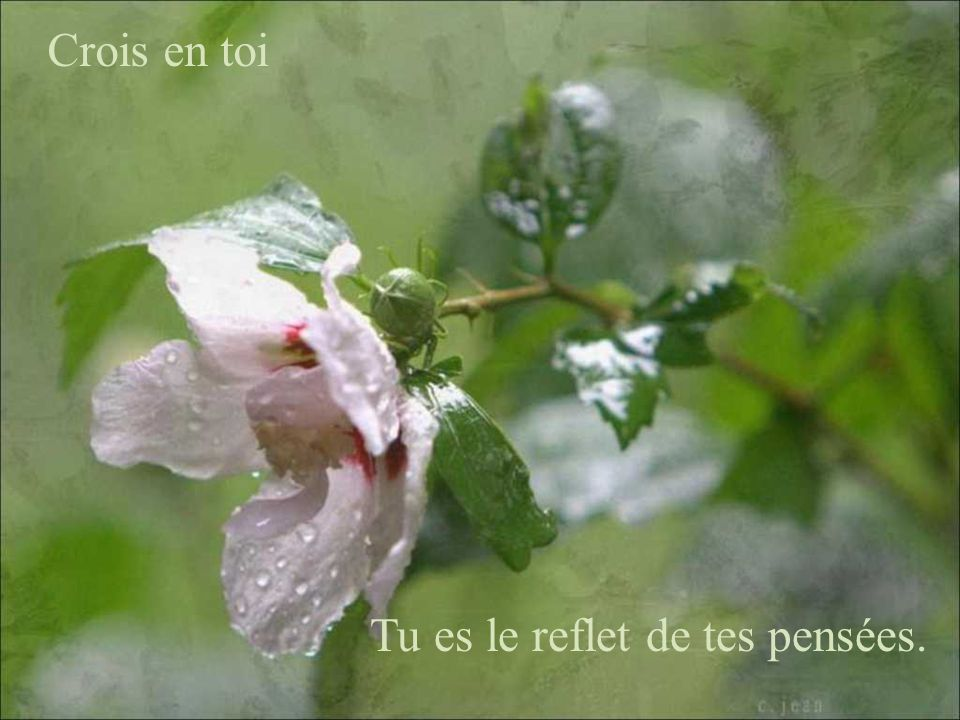Crois en toi Tu es le reflet de tes pensées.