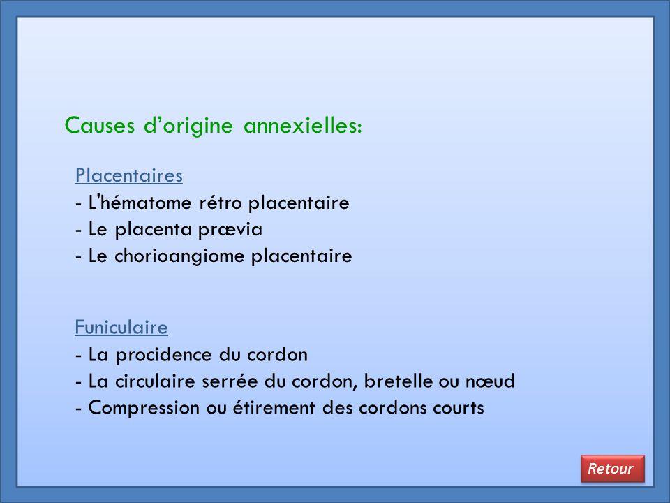 Causes d'origine annexielles:
