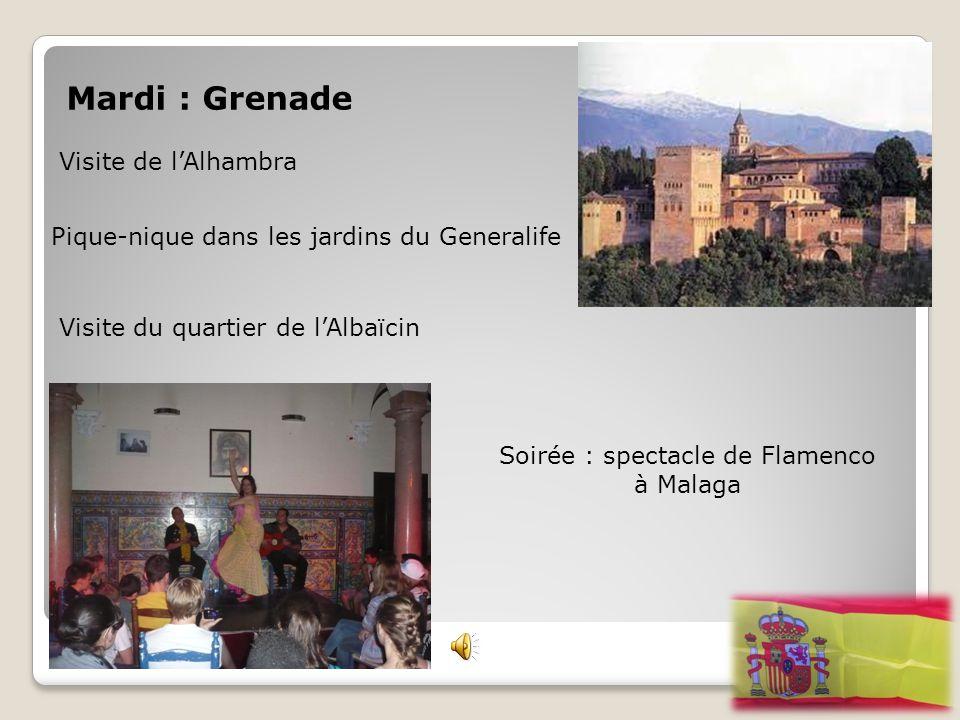 Soirée : spectacle de Flamenco à Malaga