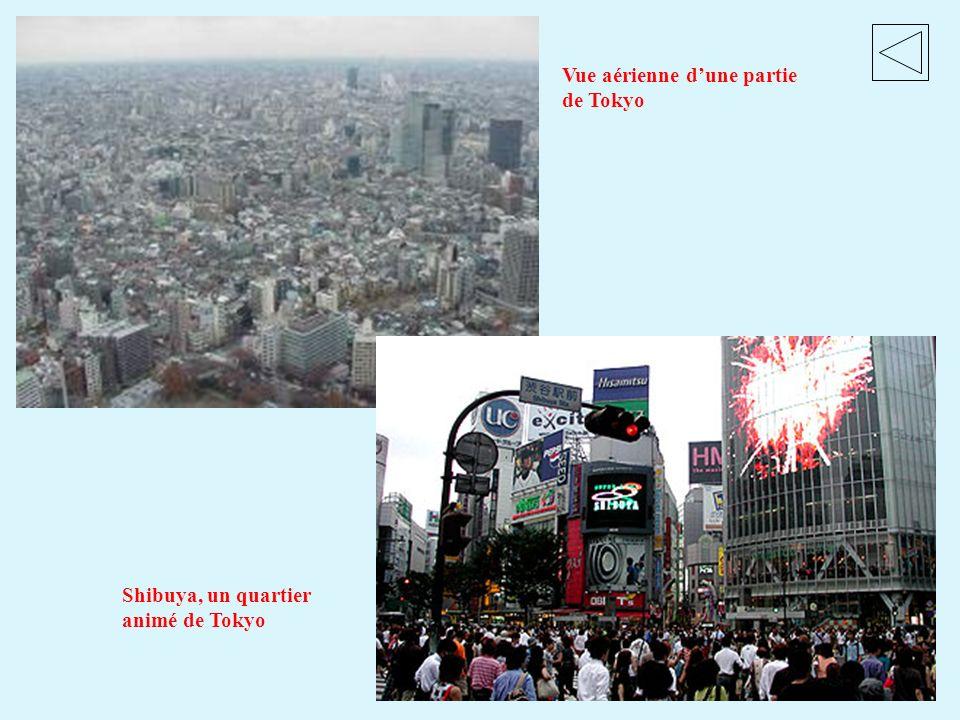 Vue aérienne d'une partie de Tokyo