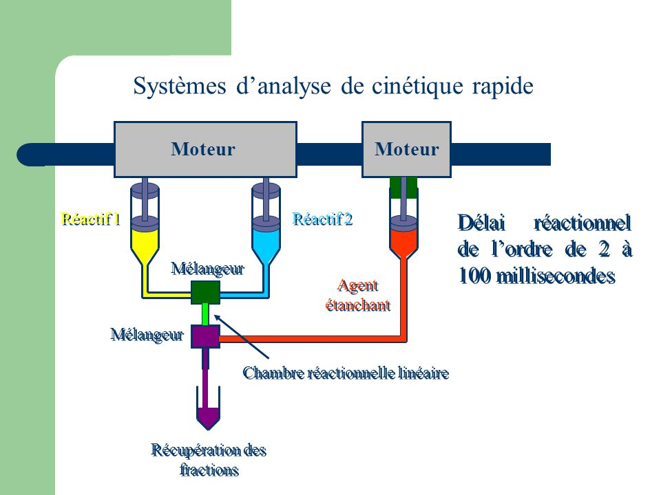 Systèmes d'analyse de cinétique rapide
